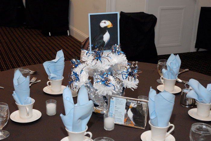 Aaron's Bar Mitzvah Centerpieces Which Included Cards With Photos And Facts About Various Animals.